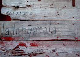 """Torna """"Vignaioli in città"""": anche alla Longarola ospite d'onore il vino e chi lo produce"""